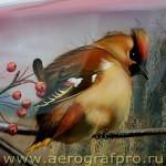 aerograf2008 113 aerografpro.ru  150x150 - Airbrush Art Gallery - Inspired by Aerograf 2008