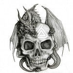 A dragon and his skull by alecan 150x150 - Ultimate Skull Reference Images Pack