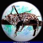 Airbrush Gallery  087 150x150 - Airbrush Gallery '286img'