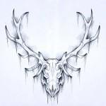 Skull 16 by Ezekielsdoom 150x150 - Ultimate Skull Reference Images Pack
