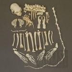 variants large 6554 150x150 - Ultimate Skull Reference Images Pack