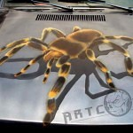 airbrushed spider 150x150 - AirbrushDOC BehindScene - Our Airbrush Works