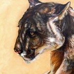 dappled 150x150 - J.W. Baker - Fantasy and Wildlife Art