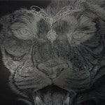 Airbrush Tiger Car Hood 12 150x150 - Airbrush a Tiger on The Car Hood Without Any Stencil